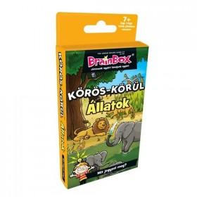 brainbox-koros-korul-allatok-kartyajatek